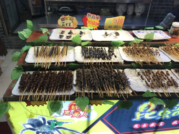 Chinese dried insects