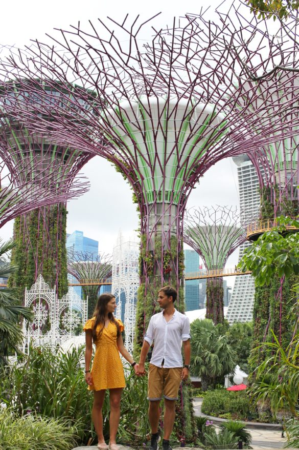 Gardens by the bay supertree