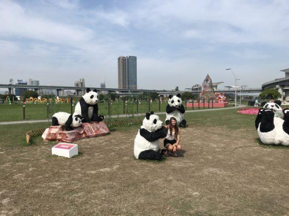 New Taipei Metropolitan park